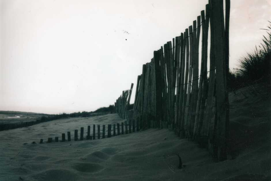 Beach,Sussex,Camber,Sand,dunes,black,white,photography,35mm